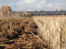 Ausplow's Biofurrow ™ hypothesis could see annual crop establishments achieved in the same furrow.