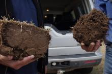 This photograph clearly shows the importance of building soil structure to allow access to moisture and air. On the left is a typical 'brick' of compacted soil compared to a clod on the right showing roots moving at depth through aerated and structured soil. The latter is the type of result created by the DBS and clearly demonstrates the 'pot plant' analysis of how the DBS establishes the right environment for plant root growth.