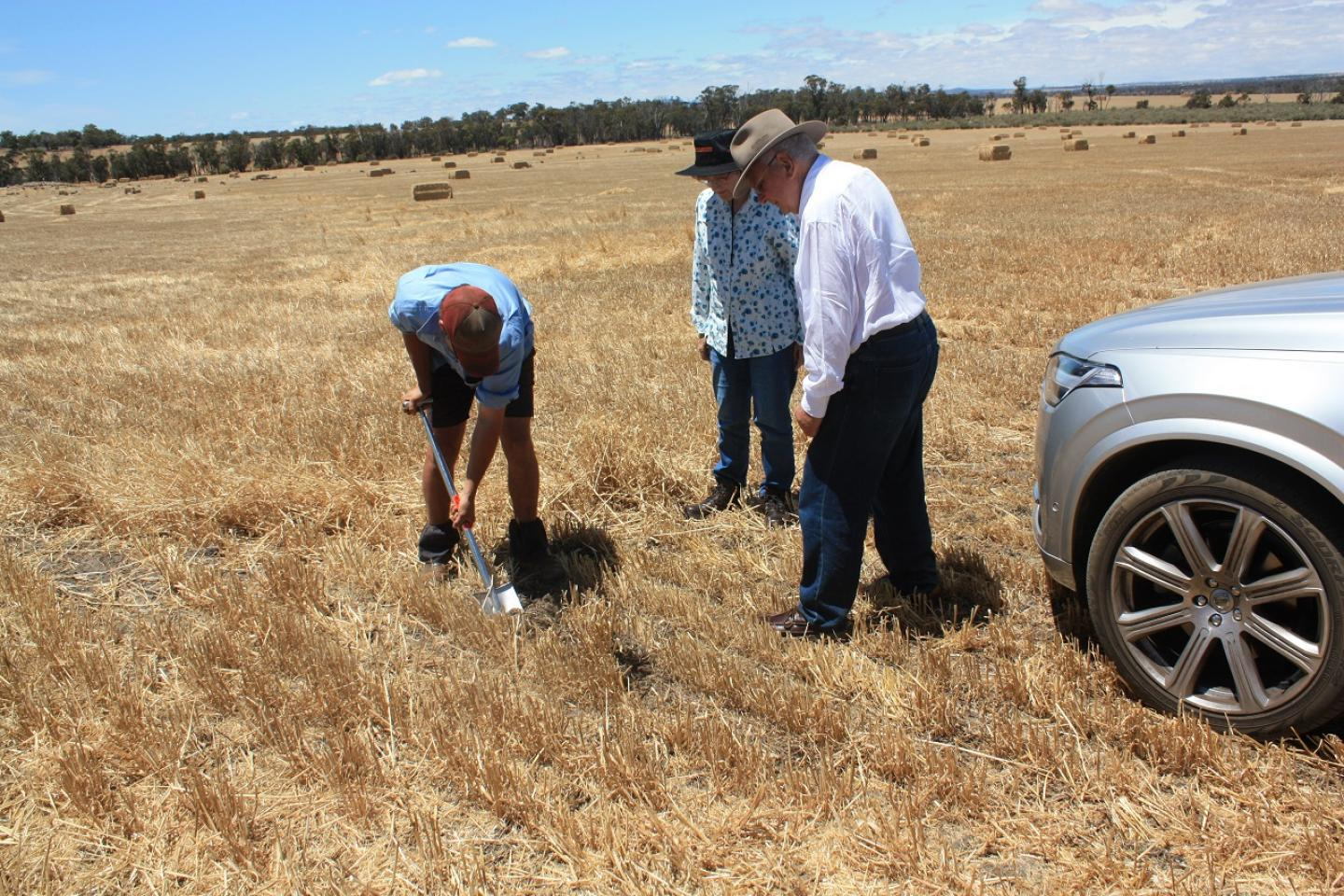 Cranbrook farmer Theo Cunningham (left) digs into an old root pathway to examine subsoil. He is being watched by Ausplow research and development coordinator Dr Margaret Roper and Ausplow managing director John Ryan AM.